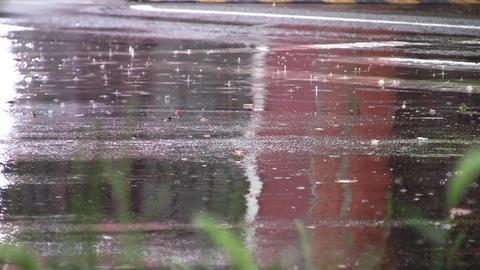Car traffic on heavy rain 15 Footage