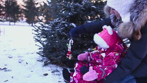Decoration the Christmas tree Footage