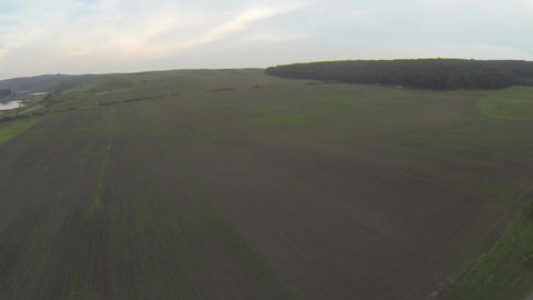 Flight over some corn farms 136aa Footage