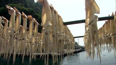 Seascape of Ulleungdo Island in Uljin-gun, Gyeongbuk, Korea Footage