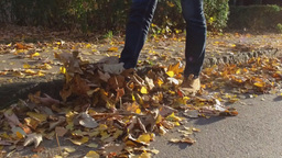 Male legs in boots on autumn leaves, walking on leaves Footage