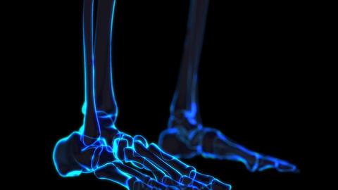 Science fiction medical design element Skeleton presentation by shots After Effectsテンプレート