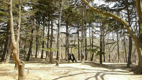 Exercise in pine forest.leisure,oriental,sport,people Footage