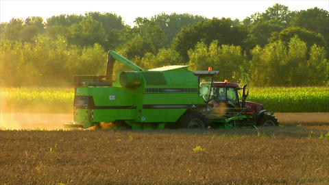 10716 combine harvester fill tractor trailer Stock Video Footage