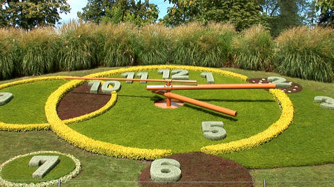flower clock g Stock Video Footage