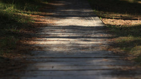 Wooden Path To The Beach stock footage