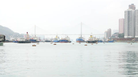 Diverse of ships on mooring area against Ting Kau Bridge, Hong Kong Footage
