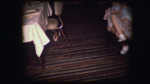 Vintage 8mm footage of a new puppy Footage