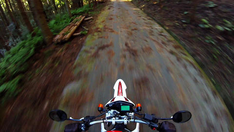 Helmet view. Rider is running on a forest road that has been developed Footage