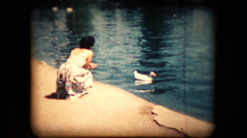View of a woman feeding birds in the mid 1960's Live Action