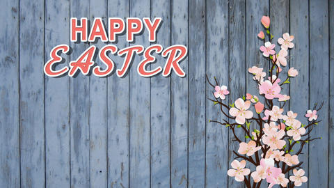 Happy Easter On Wooden Blue Background With Blossom Pink Sakura For Card Templat Animation