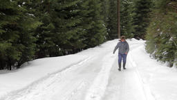 Forestry worker who goes on a road with snow through the forest 19 Live Action