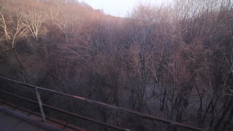 Train passes over a metal bridge while walking through a forest defoliation 48 Footage