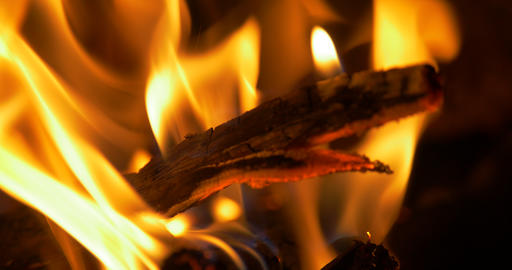 Beautiful Campfire, Bonfire Closeup Footage