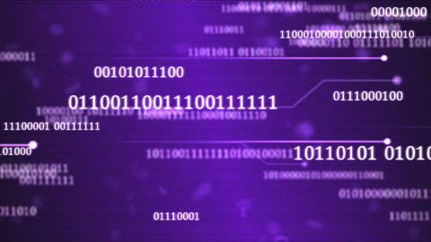 Random Binary Codes and Computer Themed Animation - Loop Violet Animation