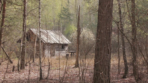 Wooden House in the Forest 02 Footage