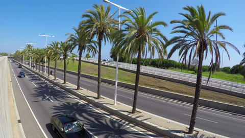 Palm Tree Highway Semi Dutch Angle Stock Video Footage