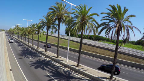 Palm Tree Highway Semi Dutch Angle Stock Video Footage