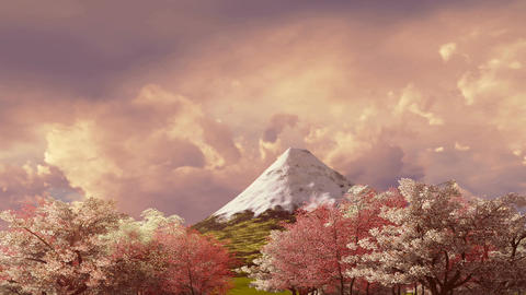 Mt Fuji and cherry blossom at sunset or sunrise Animation