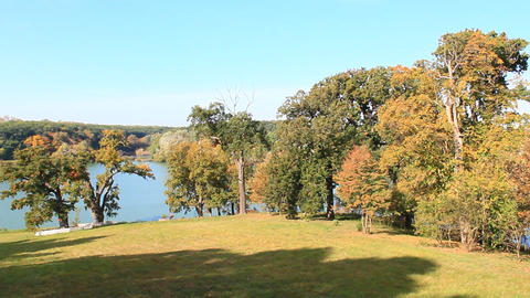beautiful lake in the forest and tree with yellow leaves in autumn ビデオ