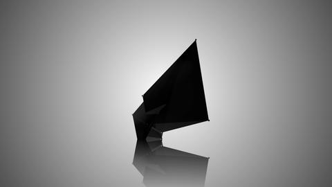 Abstract Black Fractal Geometric, Polygonal or Lowpoly Style Black Sphere made F Animation