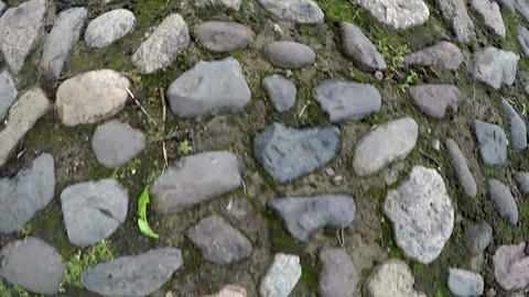 Movement on a stone path Live Action