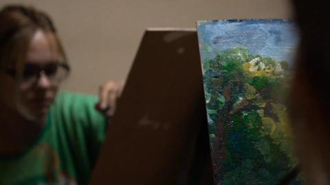Woman Artist Art Painting Footage