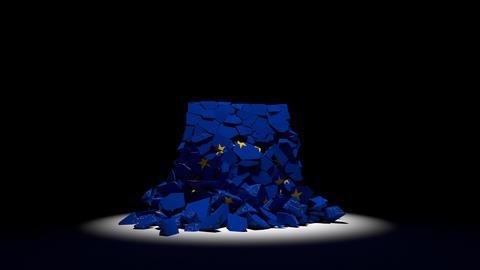 EU collapse flag Europe European Union 4k Live Action