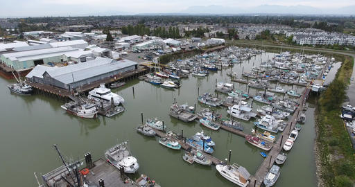 Aerial view of boats parked by the dock Footage