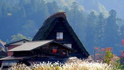 Japan's World Cultural Heritage Nature-rich Shirakawa-go Village DSCF3112 Footage
