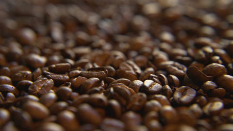 Roasted Coffee Beans, Right Live Action