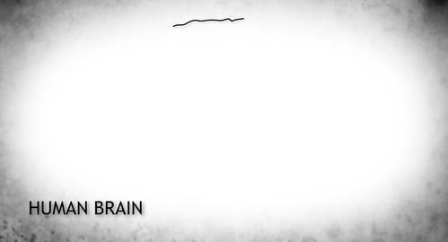 4K Human Brain 02 Japanese Stock Video Footage