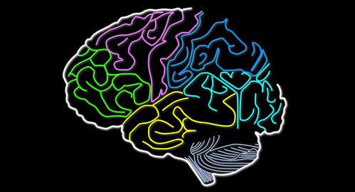 4K Human Brain 06 Stock Video Footage