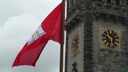 Hamburg City Hall 02 flag Image