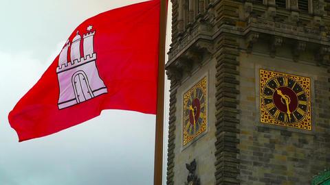 Hamburg City Hall 15 flag stylized Stock Video Footage