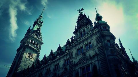 Hamburg City Hall 19 stylized Stock Video Footage