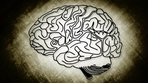 Human Brain 07 Stock Video Footage