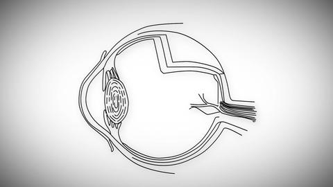 Human Eye 03 Stock Video Footage