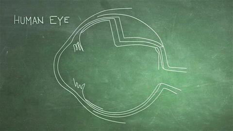 Human Eye 05 Stock Video Footage