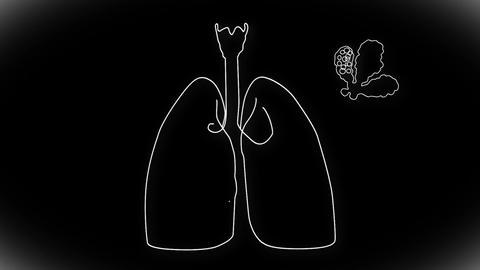 Human Lung 04 Stock Video Footage