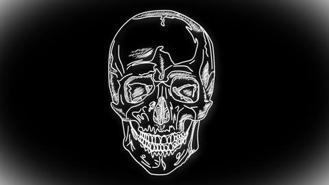 Human Skull 04 front Stock Video Footage