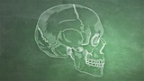 Human Skull 10 side Animation