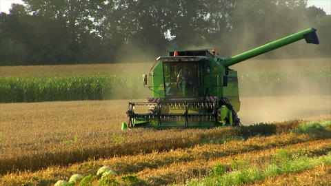 10718 combine harvester at work Stock Video Footage