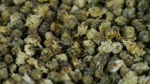 Many herbal chrysanthemum bud Stock Video Footage