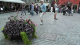 Stockholm Downtown 54 Gamla Stan Footage