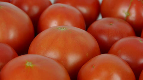 A set of fresh tomato fruit Stock Video Footage