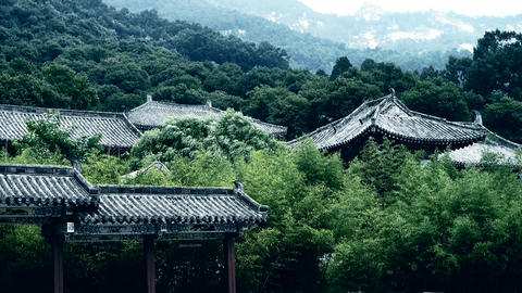 China ancient architecture in bamboo forest Stock Video Footage