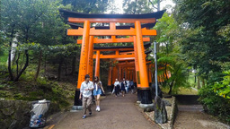Kyoto, Japan - Japanese people and tourists enter Fushimi Inari Shrine in Kyoto Footage