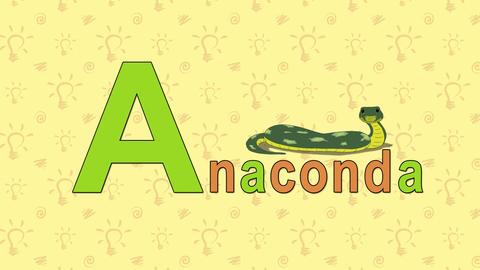Anaconda. English ZOO Alphabet - letter A Footage