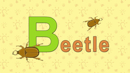 Beetle. English ZOO Alphabet - letter B Live Action